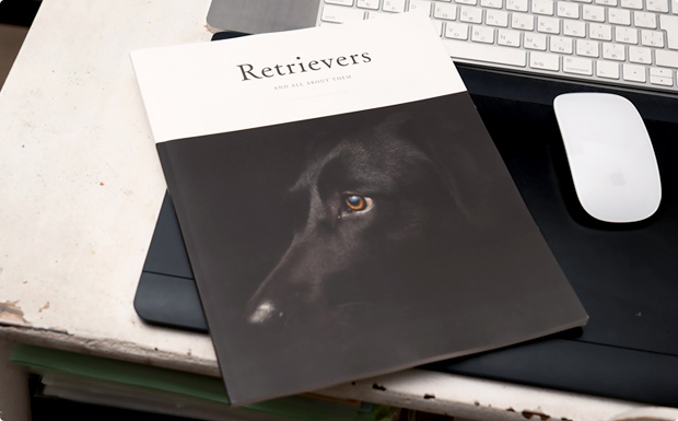 Retrievers and all about them(レトリーバーのすべて)